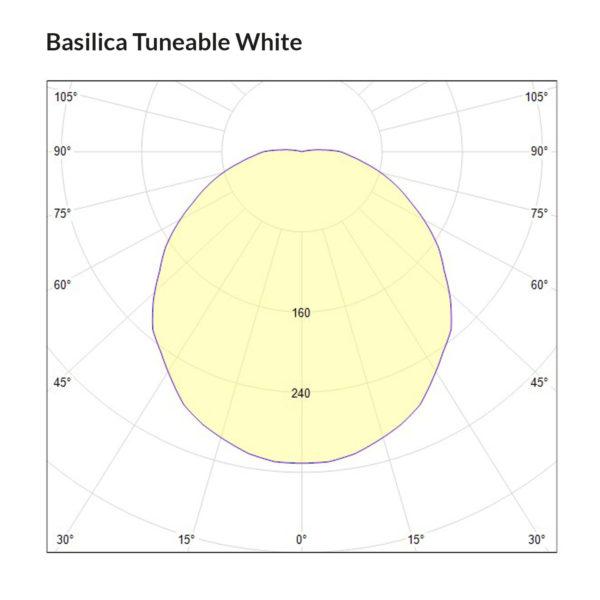 Basilica TW Polarkurve Designplan